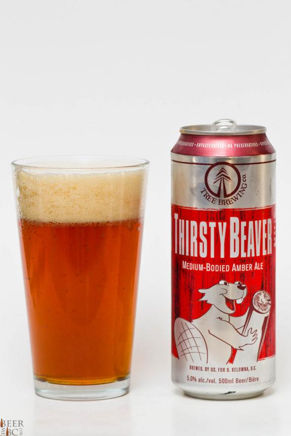 Tree Brewing Thirsty Beaver Amber Ale Review