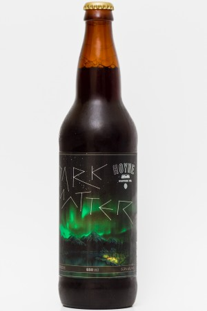 Hoyne Brewing - Dark Matter Review