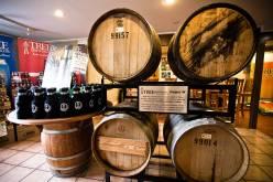 Tree Brewing Company Brewery Visit – Kelowna BC