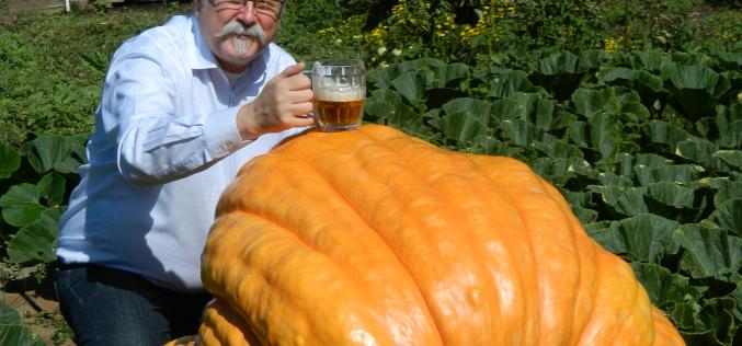 Scandal Brewing Offers Second 'Wonder' – Grand Canyon Pumpkin Bock