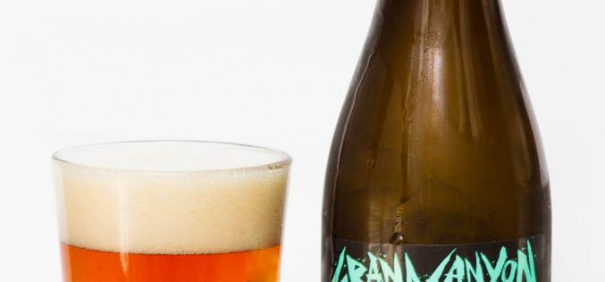 Scandal Brewing Co. – 7 Wonders Grand Canyon Pumpkin Bock