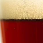 Lighthouse Road Trip Fresh-Hop Dark Ale Review