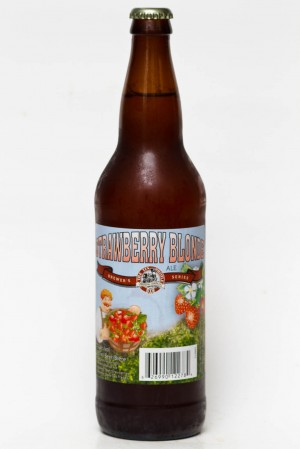 Tin Whistle Strawberry Blonde Ale Review