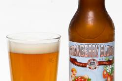 Tin Whistle Brewing Co. – Strawberry Blonde Ale (2013)