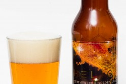 Hoyne Brewing Co. – Helios Dortmunder Golden Lager
