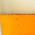 Hoyne Helios Dortmunder Golden Ale Review