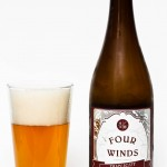 Four Winds Brewing - Triplicity  Belgian Tripel Review