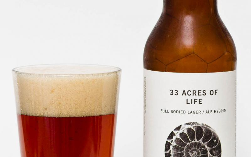 33 Acres Brewing Co. – 33 Acres of Life California Common