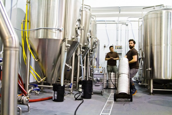 Kegging the first Dageraad Brew