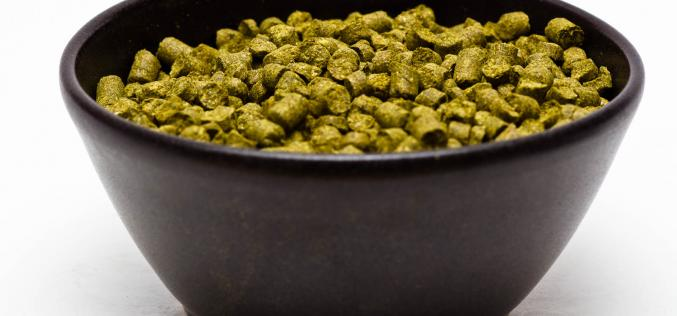 Craft Beer Hop Profile – Topaz Hops