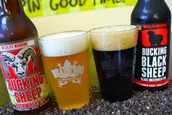 Two Bucking Sheep – New Beer From Dead Frog Brewery