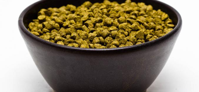 Craft Beer Hop Profile: Galaxy Hops