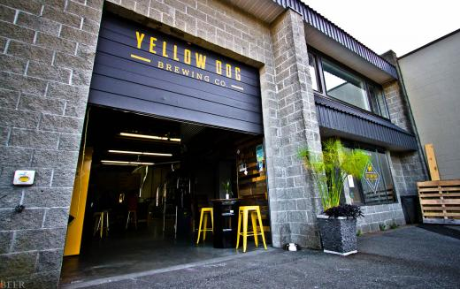Yellow Dog Brewing Company – Bringing Craft Beer to the People of Port Moody