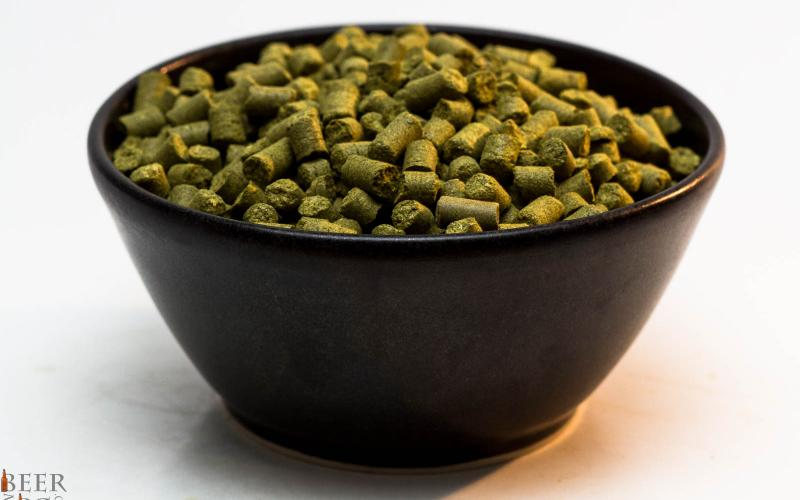 Craft Beer Hop Profile – Centennial Hops