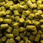 Centennial Hops Craft Beer Profile