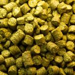 Craft Beer Hop Profile - Amarillo Hops
