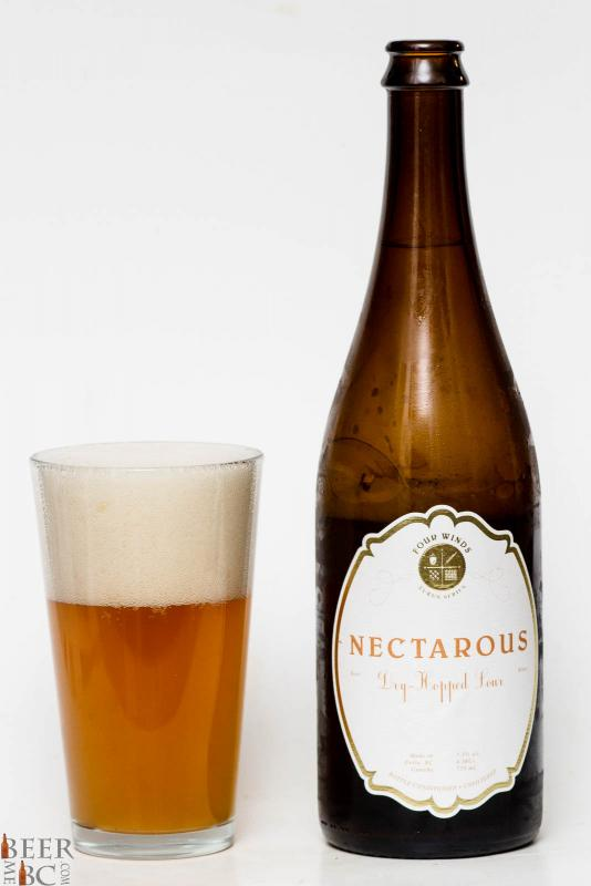 Four Winds Nectarous Dry Hopped Sour Ale Review