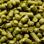 Craft Beer Hop Profile – Target Hops