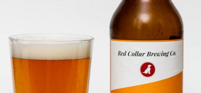 Red Collar Brewing Co. – Belgian Tripel