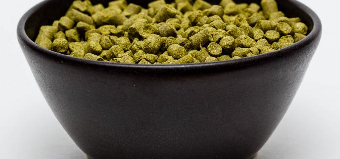 Craft Beer Hop Profile – Summit Hops