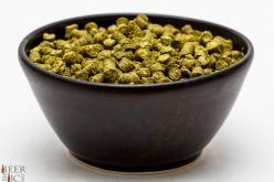 Craft Beer Hop Profile – Sterling Hops