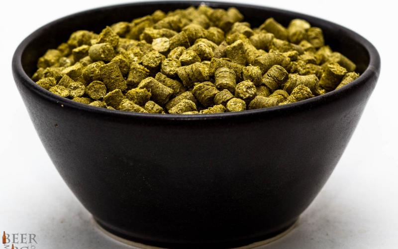 Craft Beer Hop Profile – Galena Hops