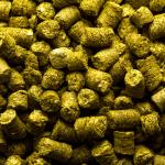 Craft Beer Hop Profile - Galena Hops
