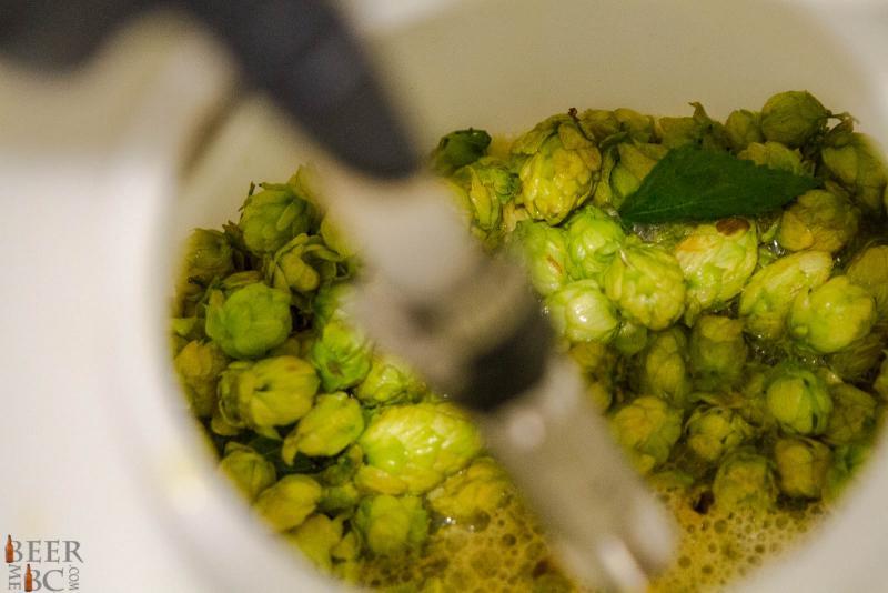 Big Rock Fresh Hop Brew