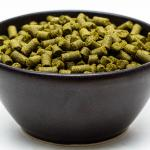 Craft Beer Hop Profile - Polaris Hops