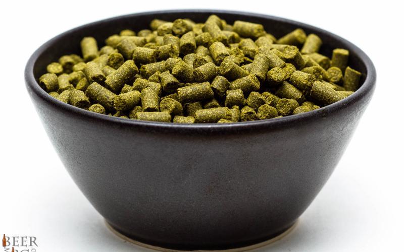 Craft Beer Hop Profile – Polaris Hops