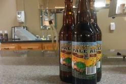 Tin Whistle Releases Penticton Harvest Fresh Hop Honey Ale