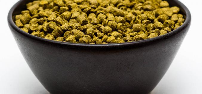 Craft Beer Hop Profile – Vic Secret Hops