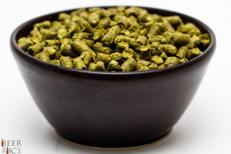 Craft Beer Hop Profile - Helga Hops