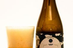 Four Winds Brewing – Common Winds Apricot Brett Ale