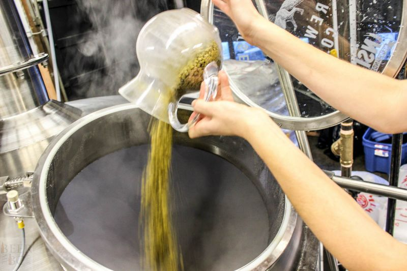 Fieldhouse Brewing Adding Hops