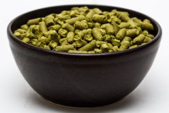 Craft Beer Hop Profile – Willamette Hops