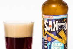 Sax In The Dark, A New Sour Ale from Phillips Brewing