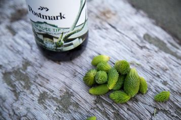 Try the Postmark Spruce Tip – A New Seasonal Golden Ale Release