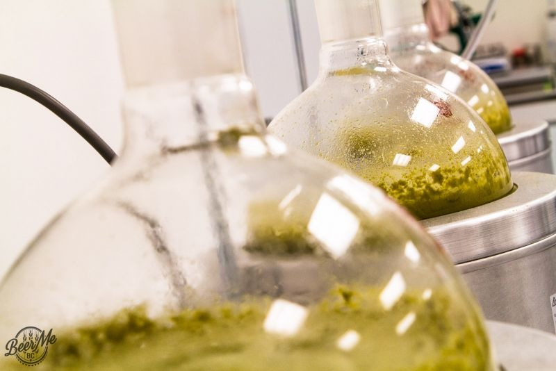 Distilling Hop Oils - CLV & Hops Connect