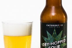 Category 12 Brewing – Dry Hopped Sour