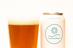 Twin Sails Brewing – Day Blink Simcoe Pale Ale