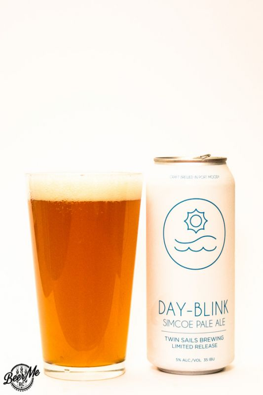 Twin Sails Brewing Day Blink Simcoe Pale Ale