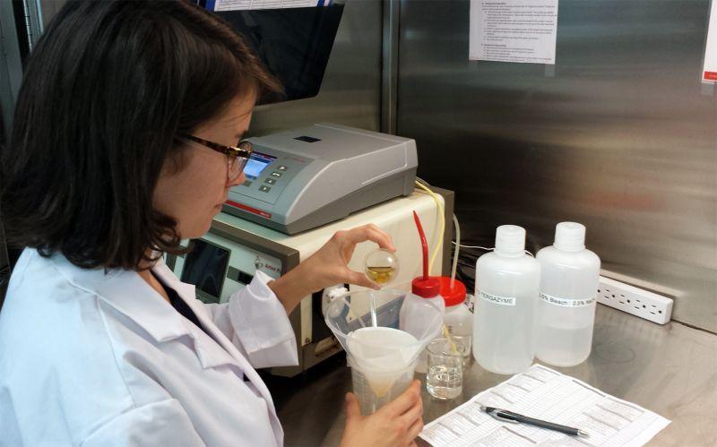 KPU Brewing Lab Analysis 2