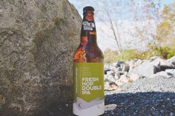 New Single Batch Series and Fresh Hop Double IPA from Old Yale Brewing