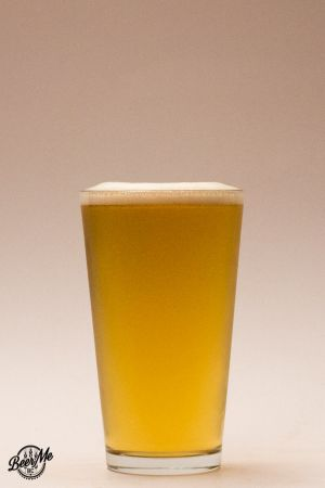 Beer Glassware Shaker Glass
