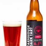 Trading Post Farmhouse Dark Tart Ale Review