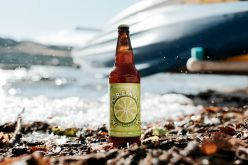 Dead Frog Releases New Single Batch C.R.E.A.M. Key Lime Milkshake IPA