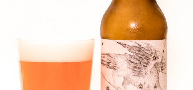 Ravens Brewing Co. – Corvus Lingonberry Lime Gose