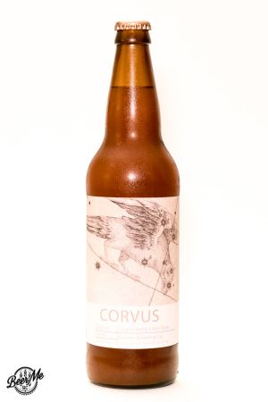 Ravens Brewing Co Corvus Lingonberry Lime Gose Bottle