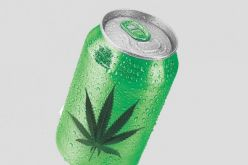 BC companies in race to develop cannabis-infused beverages